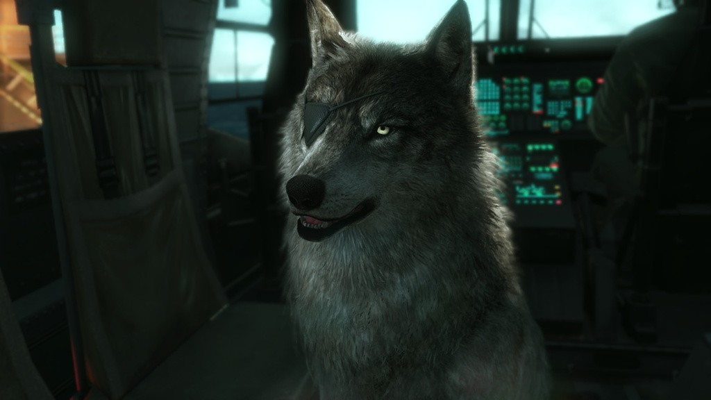 Metal Gear Solid 5 The Phantom Pain Dog Companion