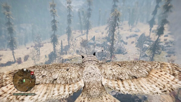 Far Cry Primal Tips and Tricks about owls